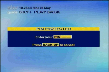 Sky Pin Protected